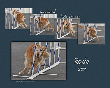 Stusalitis 11x Rosie weave sequence montage