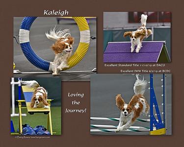 Callahan 8x Kaleigh montage