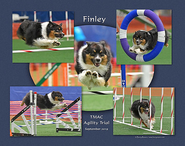 Berube 11x 5-photo Finley montage