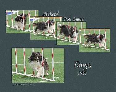 DeFusco 8x Tango weave sequence montage