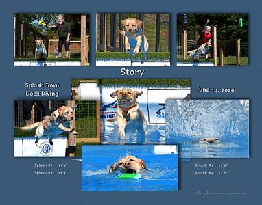 McEntee 11x 7-photo 2020 Story montage