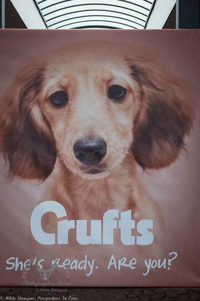 Crufts 3-12-17, Sunday