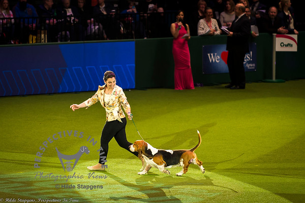 Crufts - Friday, March 10, 2017