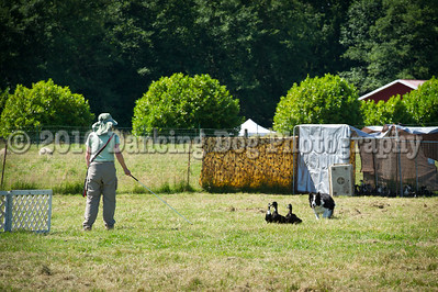 Fidos_Farm_Camp_2010-82