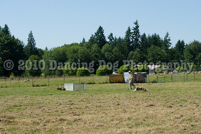 Fidos_Farm_Camp_2010-77