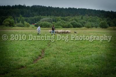 Fidos_Farm_Camp_2010-93