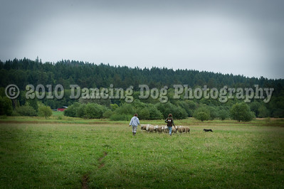 Fidos_Farm_Camp_2010-92