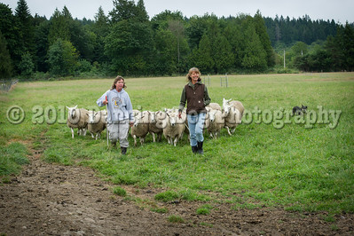 Fidos_Farm_Camp_2010-97