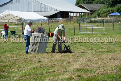 Fidos_Farm_Camp_2010-79