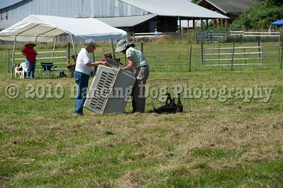 Fidos_Farm_Camp_2010-78