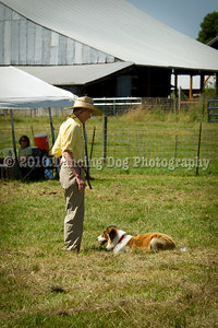 Fidos_Farm_Camp_2010-74