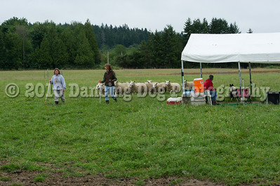 Fidos_Farm_Camp_2010-96