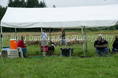 Fidos_Farm_Camp_2010-95