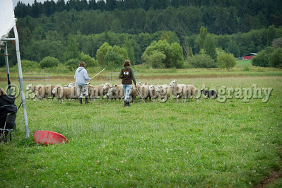 Fidos_Farm_Camp_2010-94