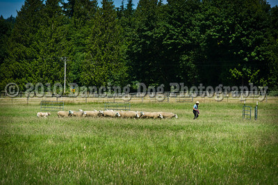 Fidos_Farm_Camp_2010-70