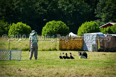 Fidos_Farm_Camp_2010-83