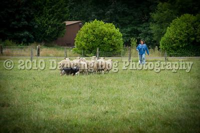 Fidos_Farm_Camp_2010-175