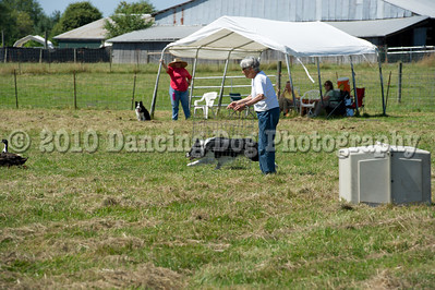 Fidos_Farm_Camp_2010-72