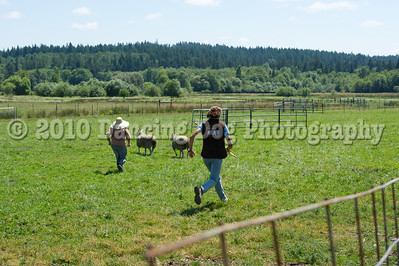 Fidos_Farm_Camp_Friday_Fun-217
