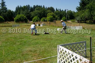 Fidos_Farm_Camp_Friday_Fun-229