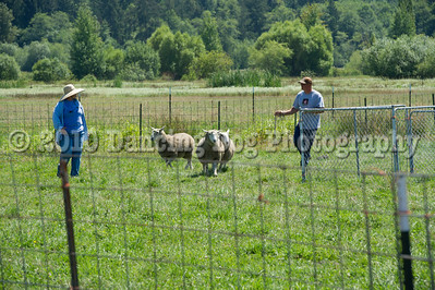 Fidos_Farm_Camp_Friday_Fun-209