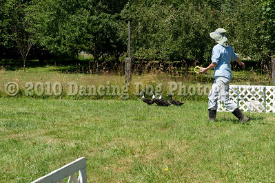 Fidos_Farm_Camp_Friday_Fun-244