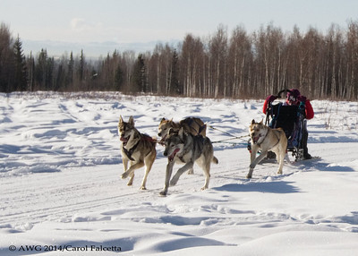 March 17 2014 Nunavut