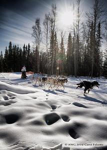 March 17 2014  Patricia Ford Nunavut