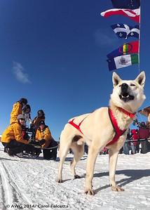 March 20 2014 Patricia Ford Nunavut