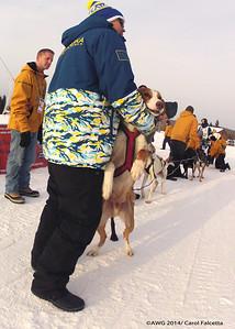 March 18 2014 Alaskan team leader