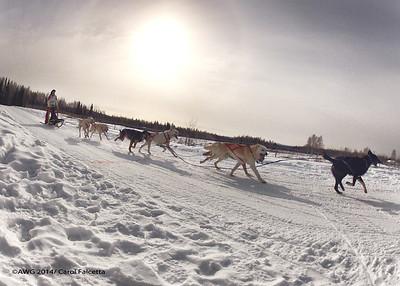 March 18 2014 Patricia Ford Nunavut