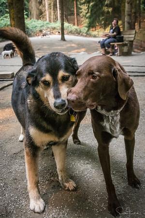 Daisy & Kumbu