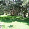 Abercrombie City Park St Pete Fl  061209 _00005