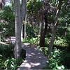Abercrombie City Park St Pete Fl  061209 _00023