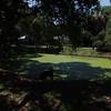 Abercrombie City Park St Pete Fl  061209 _00007