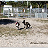 Anclote Gulf Park,paw playground,...Holiday, Florida....Mar.16, 2011
