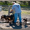 Anderson Dog Park...Feb 20, 2010