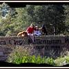 Boca Ciega Millennium County Park, Seminole,Fl.  Dec23, 2010