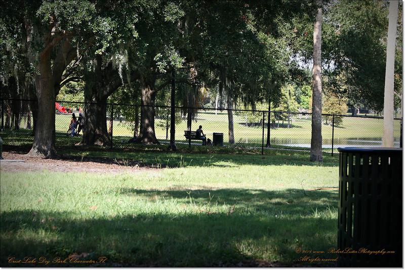 XTi 28x80mm Crest Lake Dog Park_00033