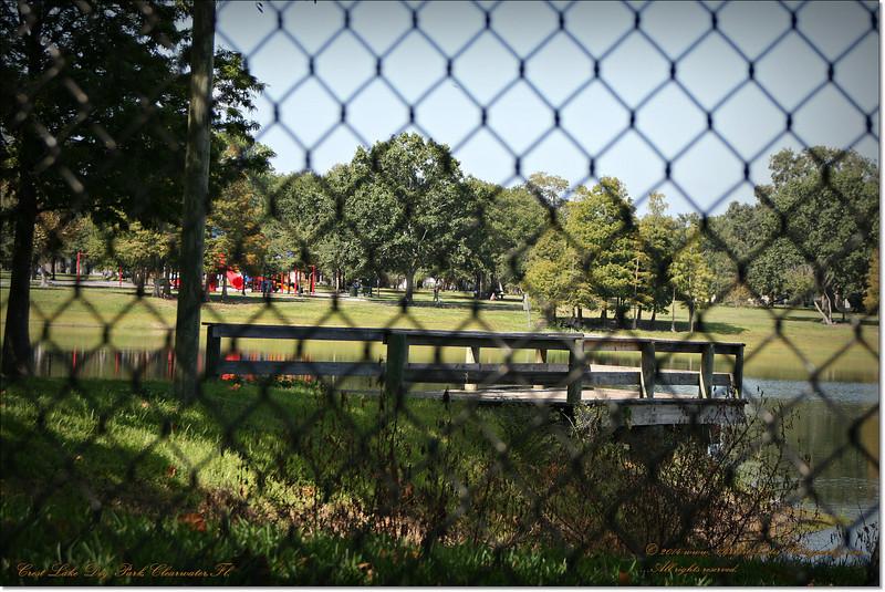 XTi 28x80mm Crest Lake Dog Park_00021