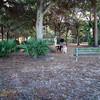 Paws Place Northeast Park Largo 020509_00023