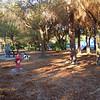 Paws Place Northeast Park Largo 020509_00001