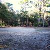 Paws Place Northeast Park Largo 020509_00022