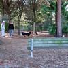 Paws Place Northeast Park Largo 020509_00024