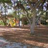 Paws Place Northeast Park Largo 020509_00035