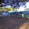 Paws Place Northeast Park Largo 020509_00005
