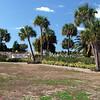 Sand Key Park Paw Playground 020709_00009