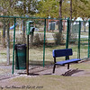Sheffield Dog Park Oldsmar Fl  022809_00011-1