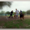 Walter Fuller Complex Dog Park 021409_00028