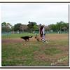 Walter Fuller Complex Dog Park 021409_00022
